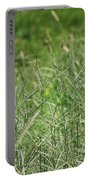 2008 Crab Grass Mead Portable Battery Charger