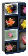 2014-03-16 - Rose Portable Battery Charger