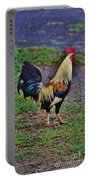 2017 Rooster Portable Battery Charger