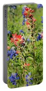 201703300-068 Indian Paintbrush Blossom 2x3 Portable Battery Charger