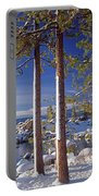 211257 Snow On Tree Sides Lake Tahoe Portable Battery Charger