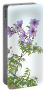 Fully Bloomed Pink Dahlia Imperialis At Garden In November Portable Battery Charger