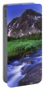 R F Landscape Portable Battery Charger