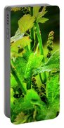 2629- Comsrock Winery Portable Battery Charger