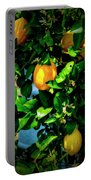 2644- Lemon Tree Portable Battery Charger