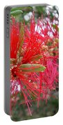 Australia - Red Flower Of The Callistemon Portable Battery Charger