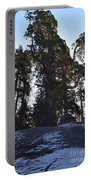 Giant Sequoia Trees Portable Battery Charger