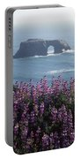 2a6101 Arched Rock And Blue Pod Lupine Ca Portable Battery Charger