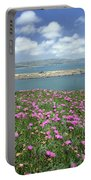 2a6106 Ice Plant Doran Beach Ca Portable Battery Charger