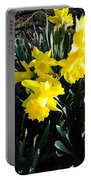 A Daffodil Exhibit Portable Battery Charger