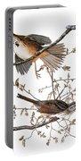 Audubon: Sparrow, (1827-38) Portable Battery Charger