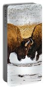 Bison Portable Battery Charger by Norman Hall