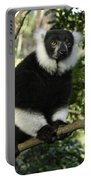 Black And White Ruffed Lemur Portable Battery Charger