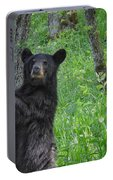 Black Bear Yearling Portable Battery Charger