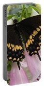 Black Swallowtail Butterfly Portable Battery Charger