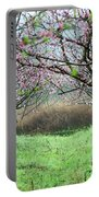 Blossoming Peach Flowers In Spring Portable Battery Charger