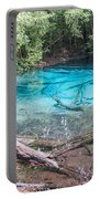 Blue Pool Portable Battery Charger