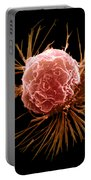 Breast Cancer Cell Portable Battery Charger