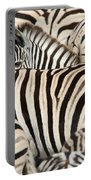 Burchells Zebras Equus Quagga Portable Battery Charger