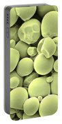 Cassava Starch Granules Sem Portable Battery Charger