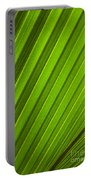 Coconut Palm Leaf Portable Battery Charger