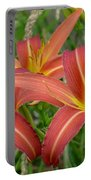 3 Daylilies Portable Battery Charger