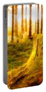 Drawings Landscapes Portable Battery Charger