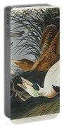 Eider Duck Portable Battery Charger