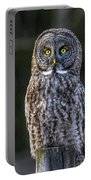 Great Gray Owl Portable Battery Charger
