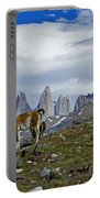 Guanacos In Torres Del Paine Portable Battery Charger