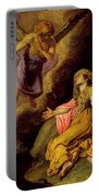 Hagar And The Angel Portable Battery Charger