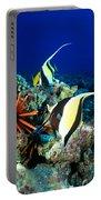 Hawaiian Reef Scene Portable Battery Charger