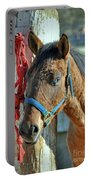 Horse Portable Battery Charger