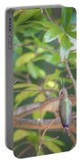 Hummingbird Found In Wild Nature On Sunny Day Portable Battery Charger