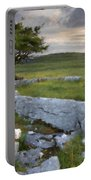Landscape By Portable Battery Charger