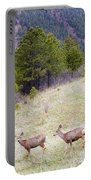 Mule Deer In The Pike National Forest Portable Battery Charger