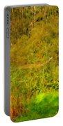 Q Landscape Portable Battery Charger