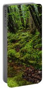 Spring Along Elk River Portable Battery Charger