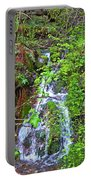 Spring In The Gorge Portable Battery Charger