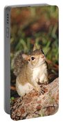 3- Squirrel Portable Battery Charger