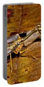 Tropical Mantispid Portable Battery Charger