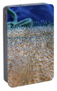 Vichy Springs Carbonated Hot Springs Portable Battery Charger