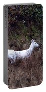 3 White Deer Portable Battery Charger