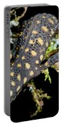 Yellow Spotted Tropical Night Lizard Portable Battery Charger