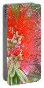 Australia - Red Callistemon Flower Portable Battery Charger
