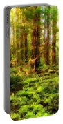 G H Landscape Portable Battery Charger