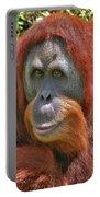 31- Orangutan Portable Battery Charger