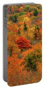North Carolina Fall Colors Portable Battery Charger