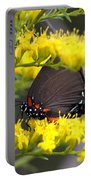 3454 - Butterfly Portable Battery Charger