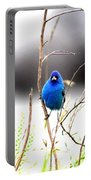 3553-015 - Indigo Bunting Portable Battery Charger